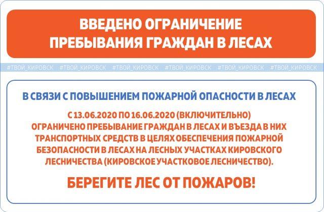 Введено ограничение пребывания граждан в лесах