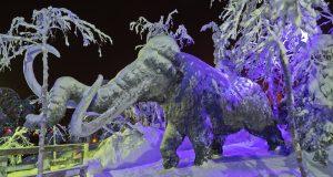 Север держит: как кировчане приручили полярную ночь и создали таинственный лес